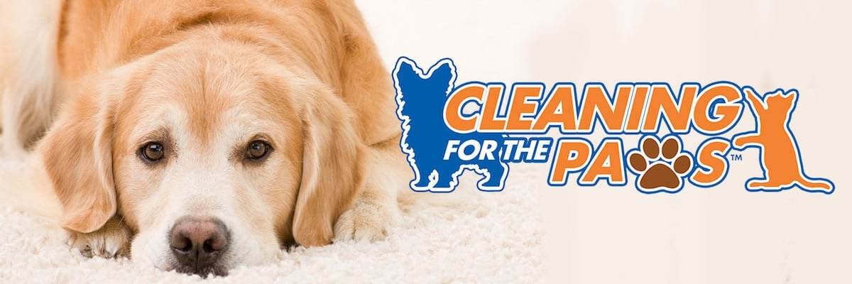 cleaning for the paws logo over a photo of a dog